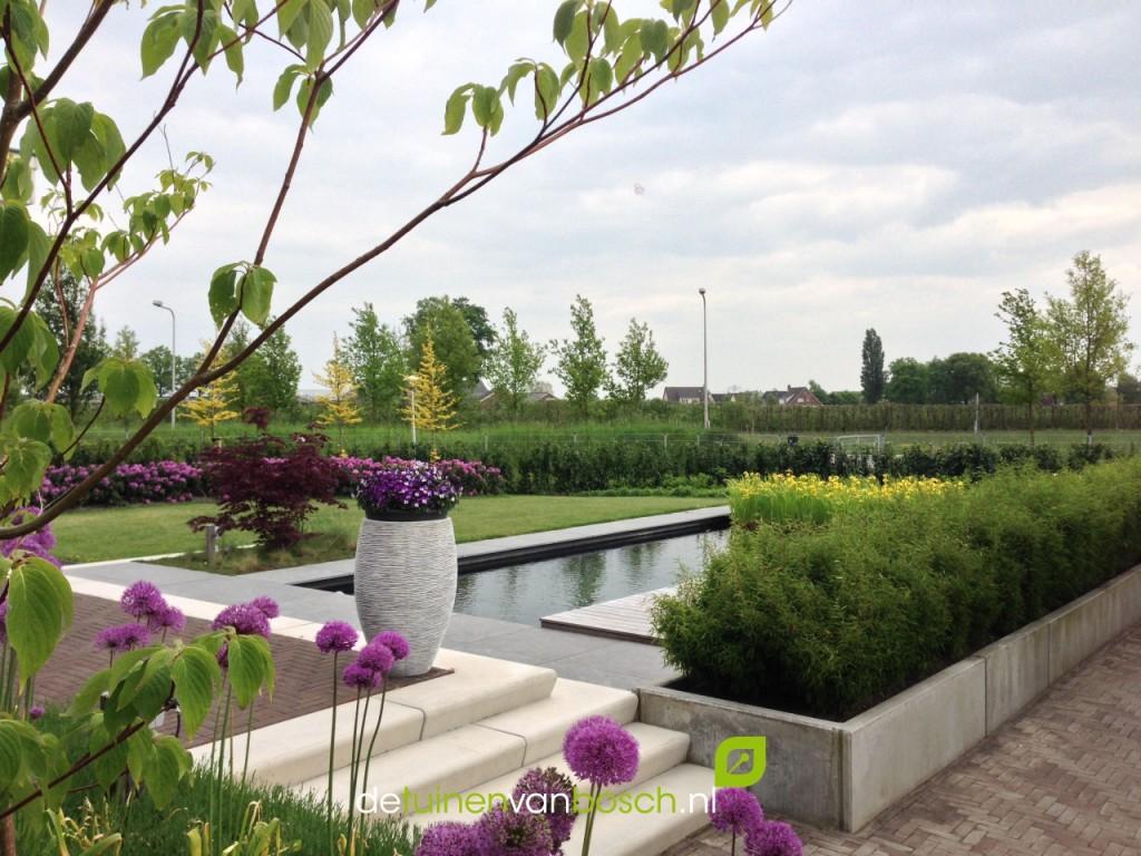 Moderne tuinen u detuinenvanbosch